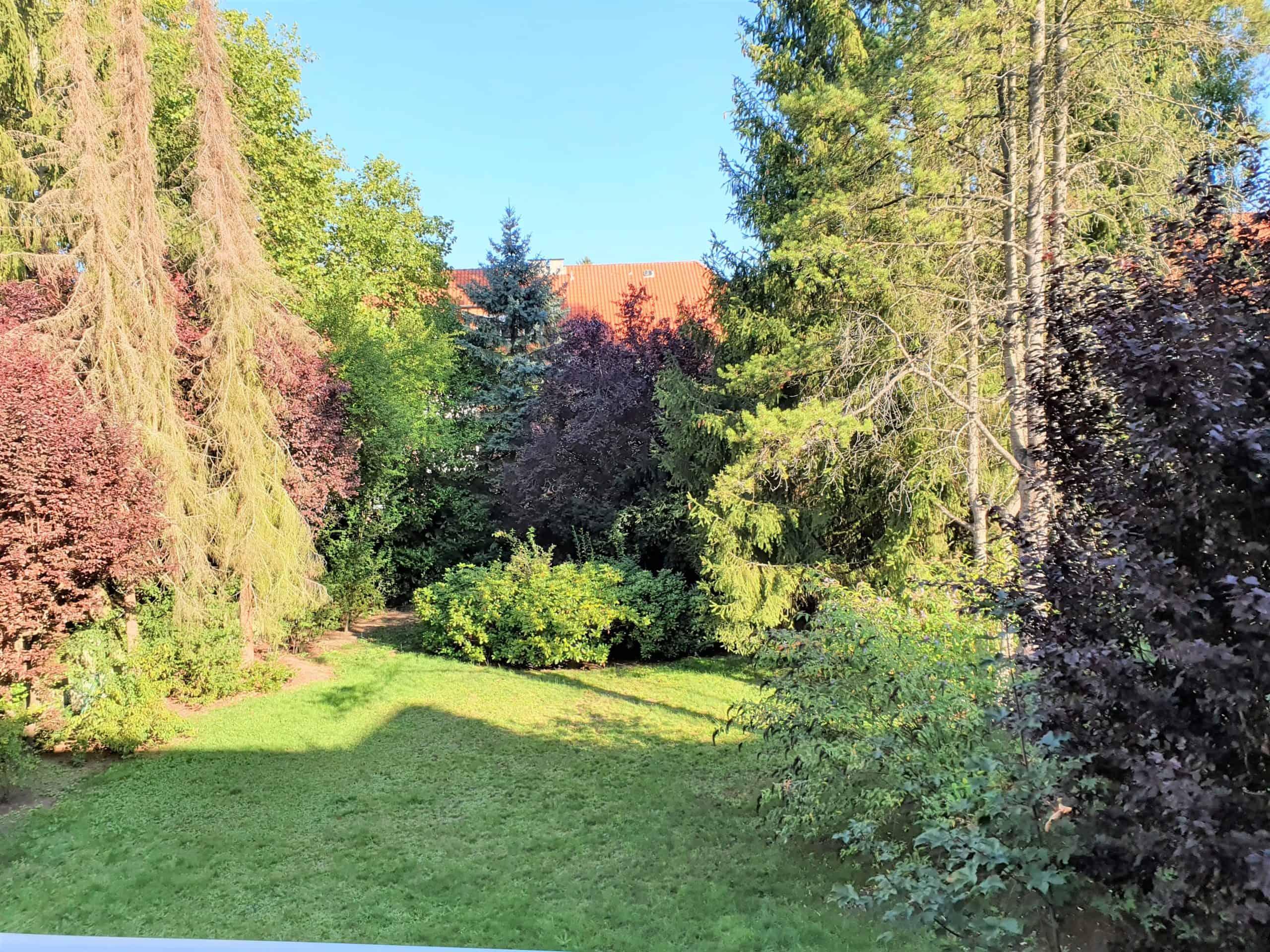 Blick in den Garten vom rückwärtigen Balkon